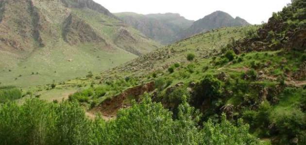 Sustainable Development of Wadi Houran- Western Iraqi Desert